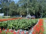 Цветущий Дзержинск