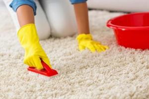 Як висушити килим в домашніх умовах