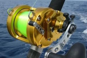 Особенности катушек для морской рыбалки