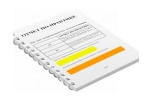 Где заказать отчет по преддипломной практике