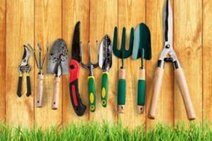 Где купить качественный инструмент